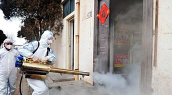 Kan koronaviruset bli en verdensomspennende epidemi?