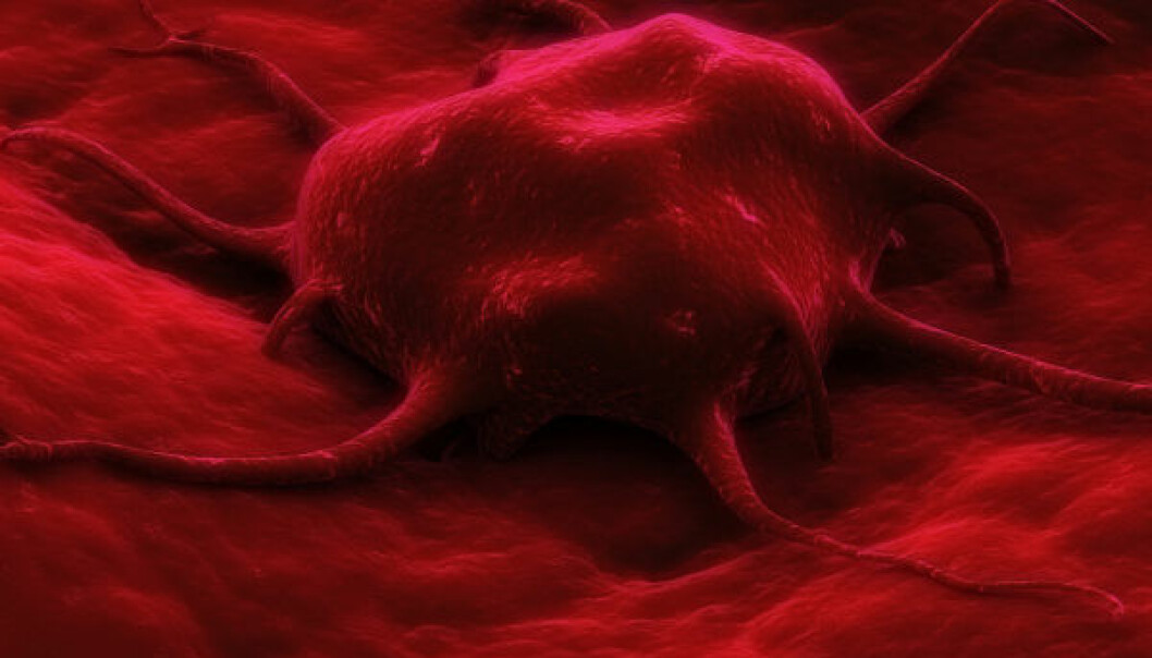 Malariamedisin mot kreft