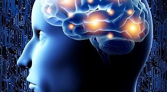 Straff og belønning i forskjellige hjerneområder