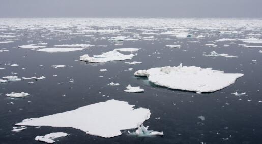 Havforskning viser at iskanten trekker sørover