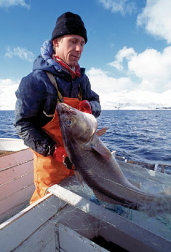 Tidligere fiskere har sluttet frivillig, men bestemte oppfatninger om hva som er «det gode liv» kan få fiskere til å se negativt på yrket sitt. (Foto: Kjell Ove Storvik, Seafood.no)
