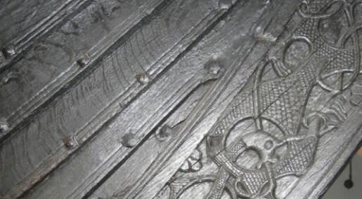 Skalldyr og plast kan redde vikingskip