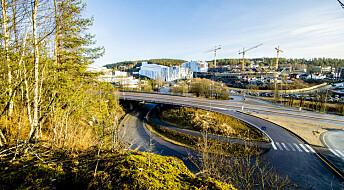 Nest varmeste januar noensinne målt i Norge – rekordvarme i ni fylker