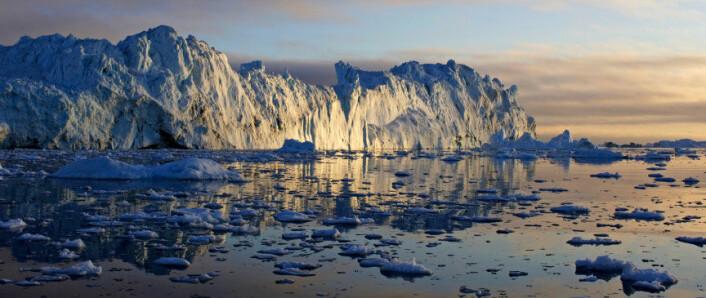 De siste tiårene har isen på Grønland krympet foruroligende fort. (Foto: iStockphoto)