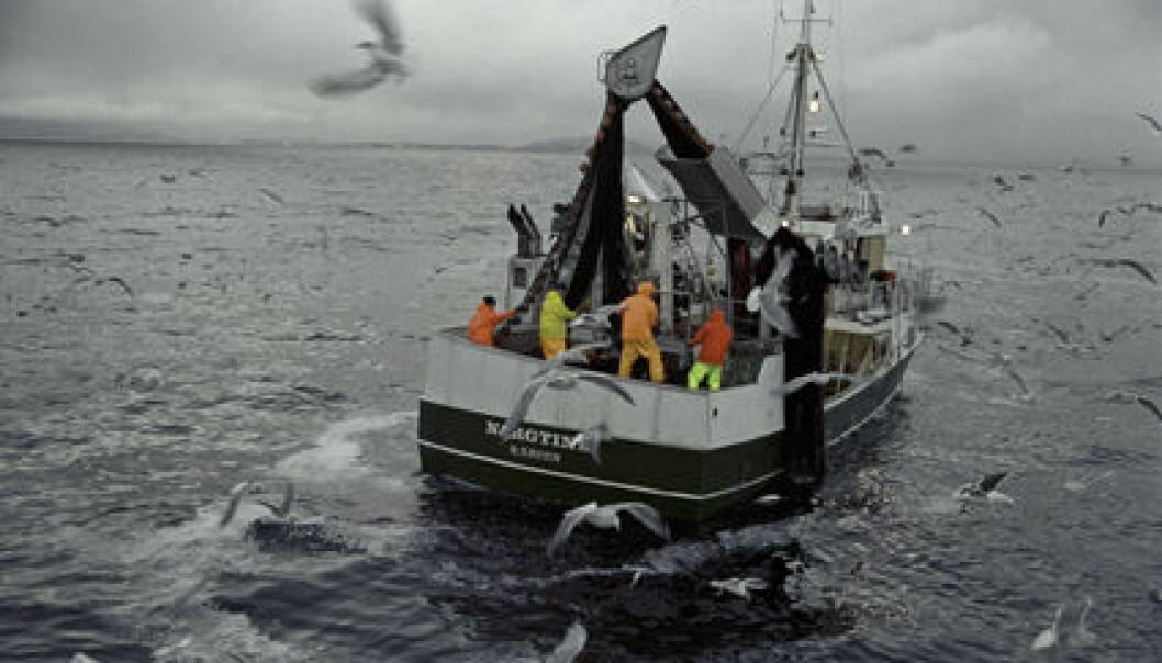 Fiskeryrket er blitt mer stabilt og forutsigbart, men det vil alltid være noen som ikke kan tenke seg et åtte-til-fire-liv. Jean Gaumy, Seafood.no