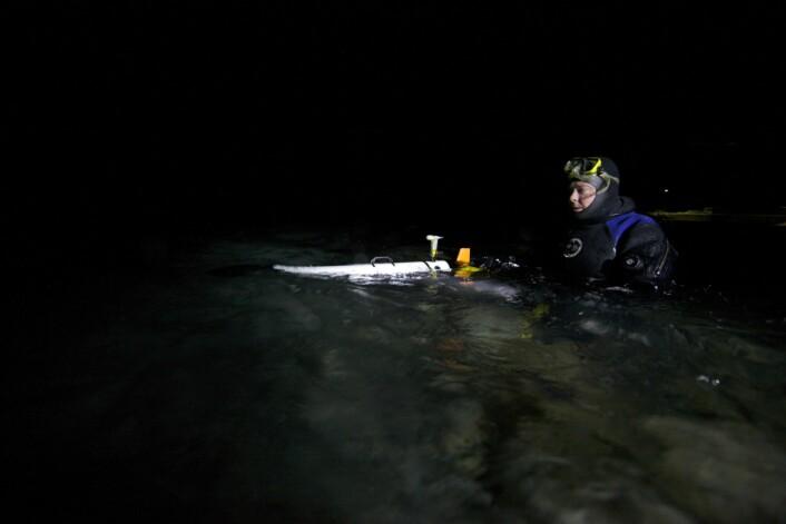 Professor Jørgen Berge i vannet med en av robotene som ble brukt – en AUV (Autonomous Underwater Vehicle). Foto: Geir Johnsen