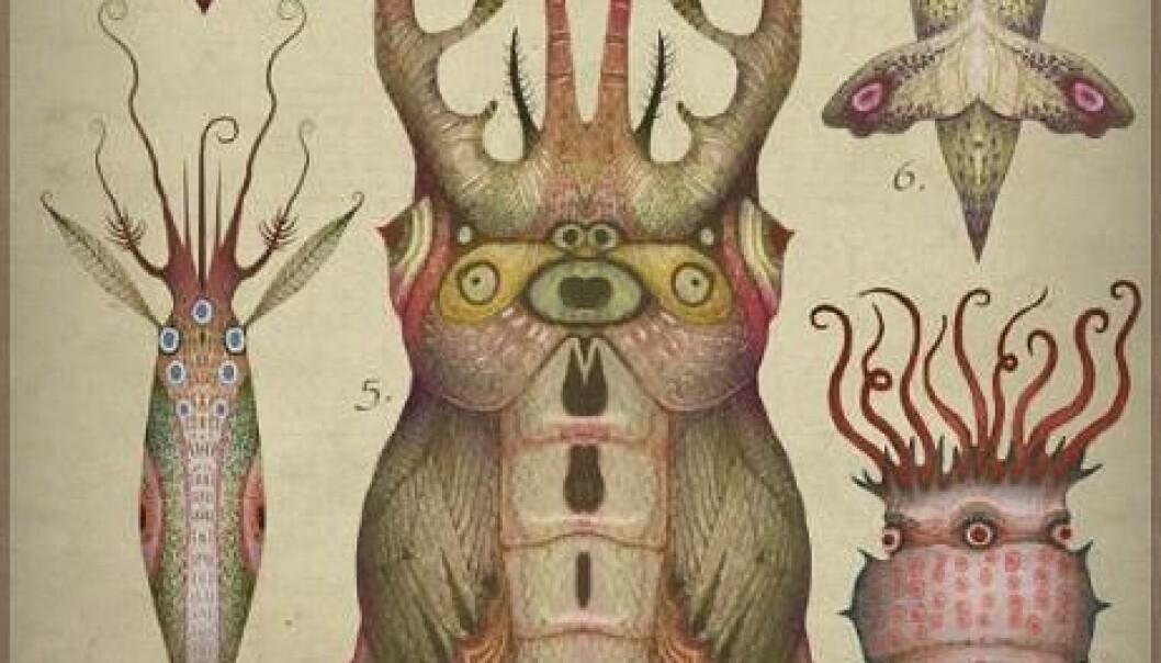 Vakre fantasidyr kunne blitt resultatet om blekksprutar verkeleg kunne pare seg med insekt. Vladimir Stankovic, CC