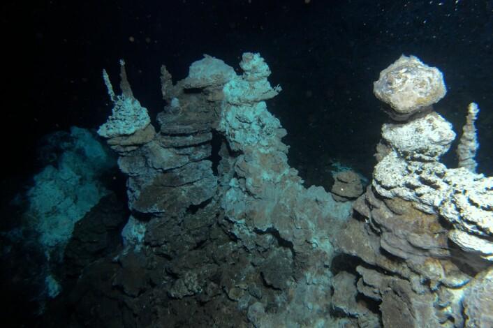 """Fra """"skorsteiner"""" på havbunnen strømmer det ut varmt vann som har skapt en unik fauna i området. (Foto: Senter for geobiologi, UiB)"""