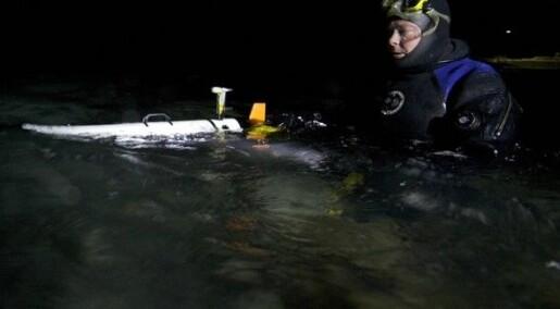 Løser havmysterier i polarnatta
