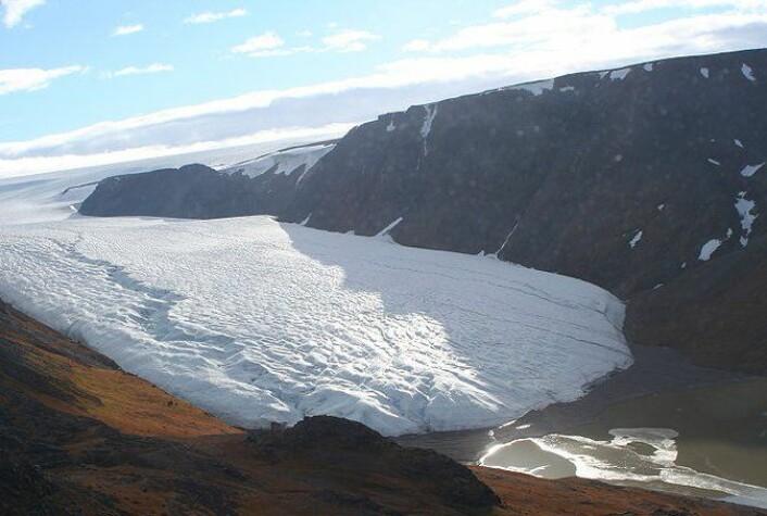 Omtrent 80 prosent av Grønland er dekket av is og på det tykkeste er iskappen over tre kilometer. (Foto: Brocken Inaglory/Wikimedia Creative Commons)