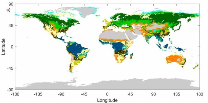 Kart over ulik vegetasjon på jorda. Blå er tropisk regnskog og mørkegrønn er boreal skog.