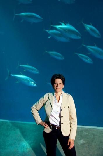 Professor Barbara Block har forsket på de største rovfiskene i mer enn tjue år. (Foto: Bart Michiels, Rolex Awards)