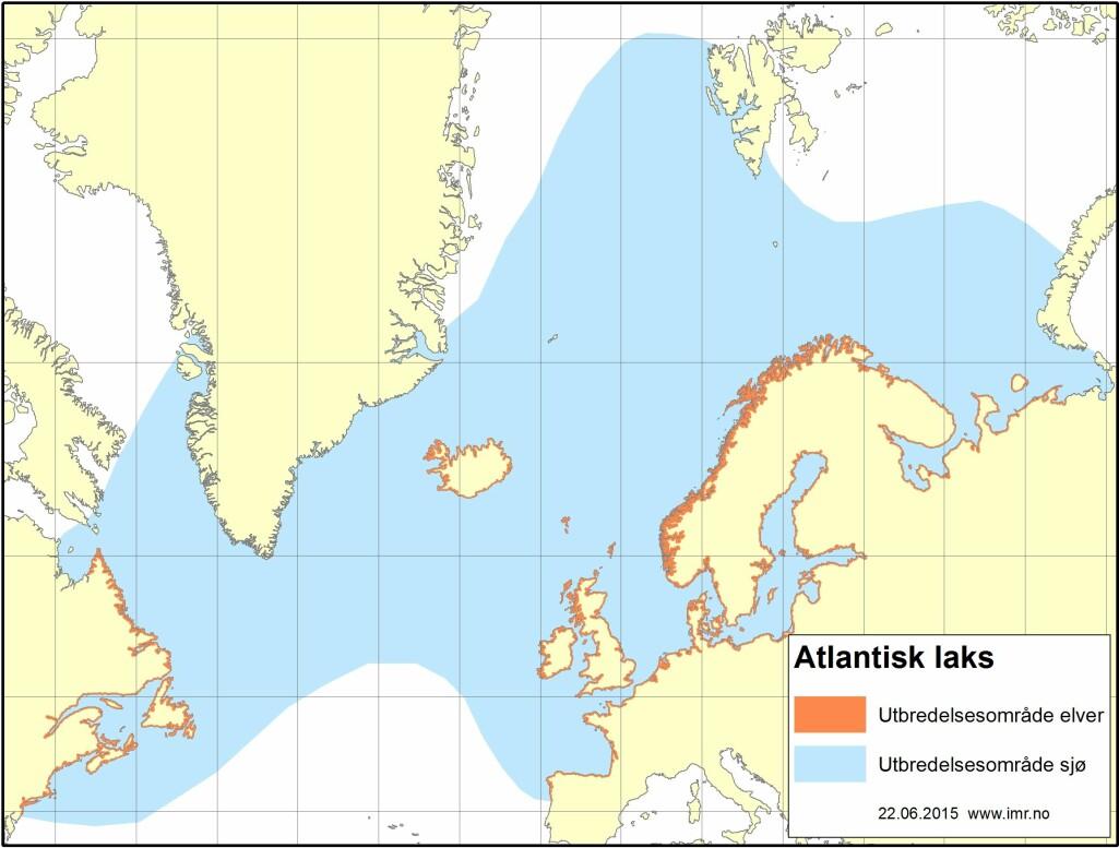 Villaksen har store deler av Nord-Atlanteren som sitt utbredelsesområde.