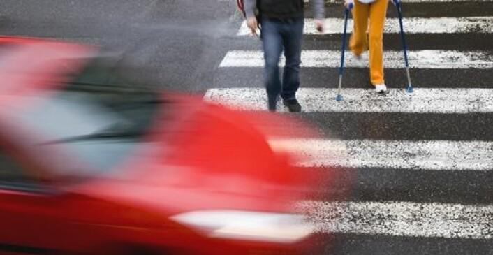 Mange ulykker skjer i fotgjengerfeltet. En av årsakene kan være lite oppmerksomme bilførere. (Foto: Shutterstock)