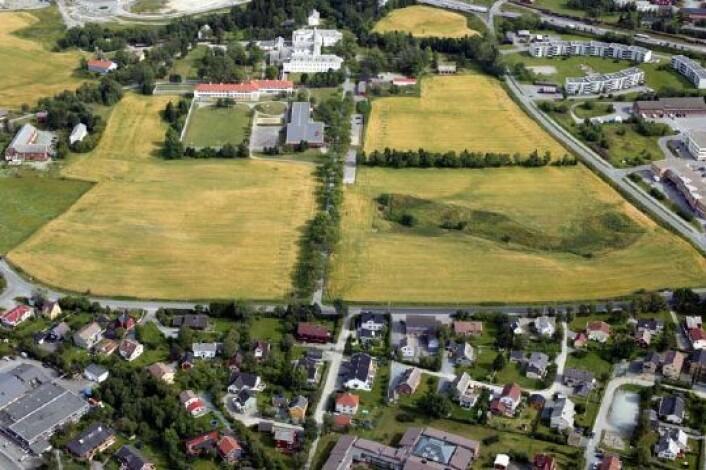 Sykehusområdet på Brøset. Det psykiatriske sykehuset må flyttes før utbyggingen kan skje. (Foto: Trondheim kommune)