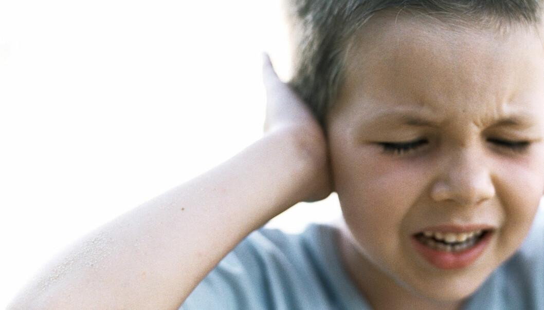 Unge hoder i kranglepine