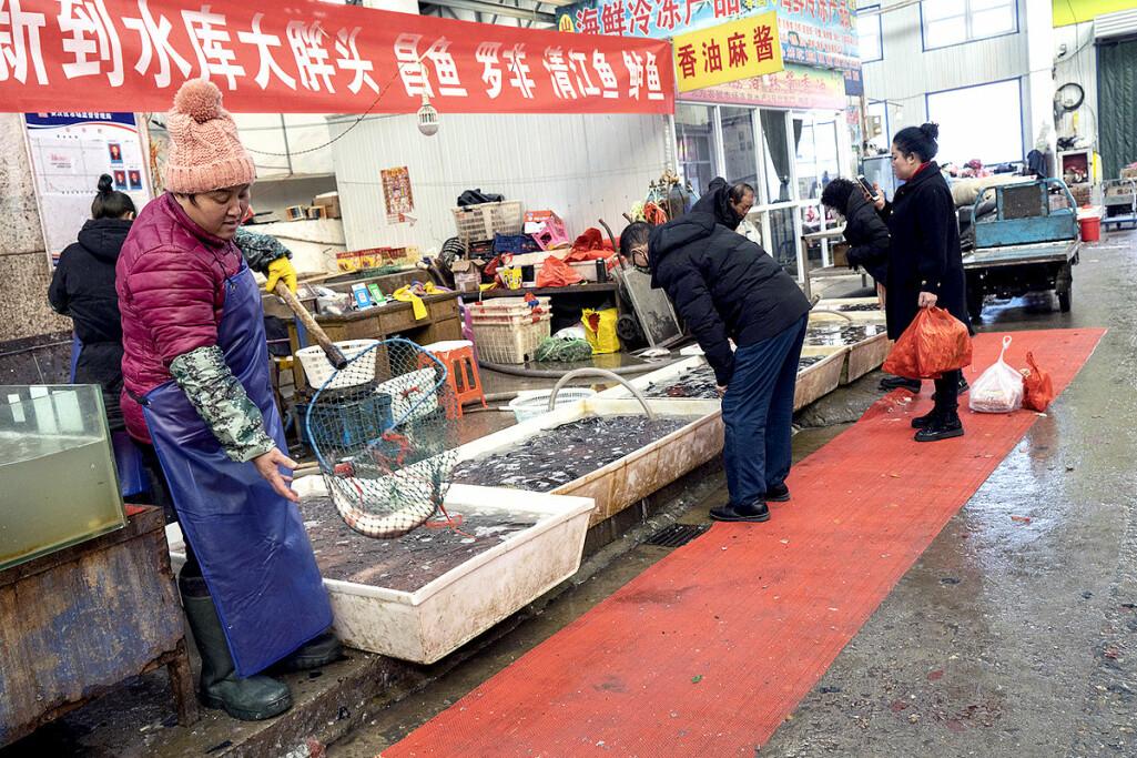 Fiskemarkedet i Langfang i Kina.