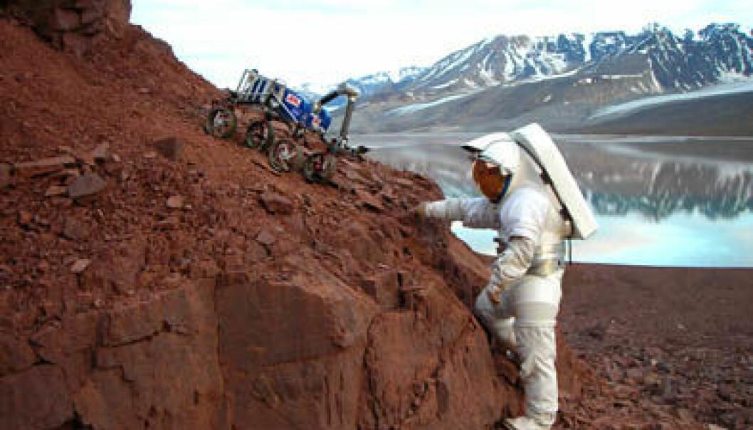 Den golde naturen og det krevende miljøet på Svalbard kan brukes til å trene astronauter som skal til andre planeter. AMASE/Kjell Ove Storvik