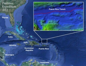 Puerto Rico-gropa. (Foto: (Kart: Promare))
