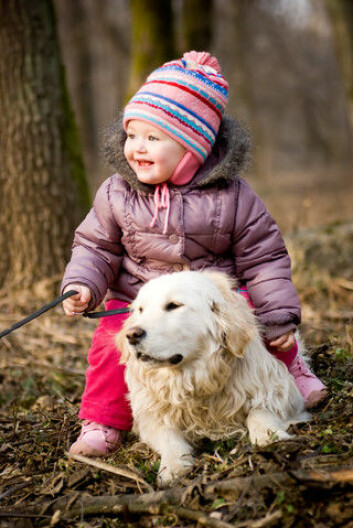 Hunder forholder seg til sine eiere som barn gjør til sine foreldre. Det er blant funnene i en ny, østerriksk undersøkelse. (Foto: Colourbox)