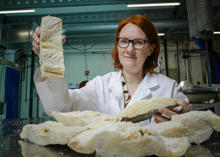 """Det startet med doktorgraden min i 2004, da jeg undersøkte bakterier i klippfisk. Siden det har jeg vært «hekta"""" på klippfisk! Disse stykkene har vært lagret i fem år."""