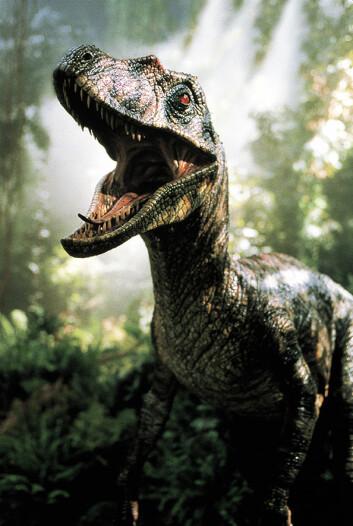 Velociraptoren vare en av de mest skremmende dinosaurene i Jurassic Park. I virkeligheten veide den knapt 15 kilo, mindre enn en moderne kalkun. (Foto: UiP)