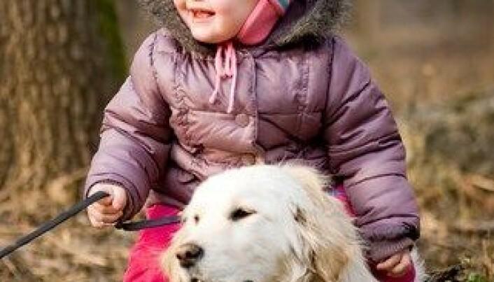 Hunder forholder seg til sine eiere som barn gjør til sine foreldre. Det er blant funnene i en ny, østerriksk undersøkelse. Colourbox