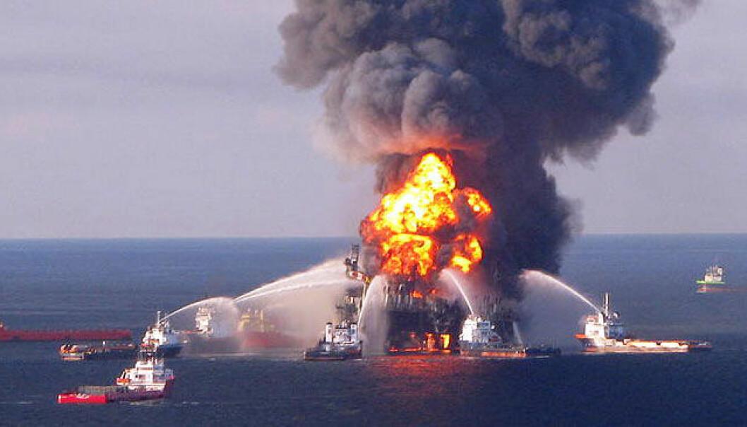 Oljeutslipp gir fisken hjerteanfall