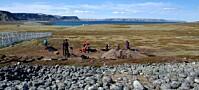 Sjømat i steinalderen var full av gift