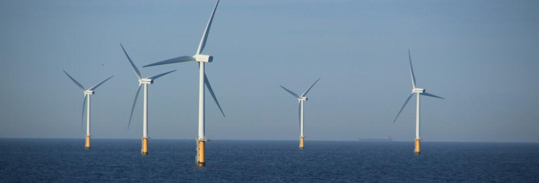 To forskere får støtte fra et legat innen vindforskning og brudynamikk.