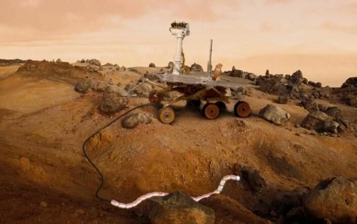 En gang i fremtiden kan muligens slangeroboter bistå større kjøretøyer på andre planeter. (Foto: (Ilustrasjon: RobotNOR))