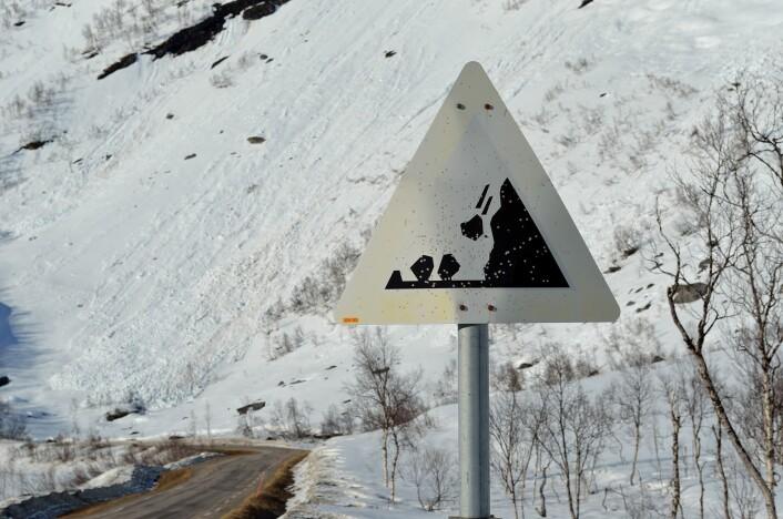 Steinsprang er den typen skred som forekommer hyppigst på norske veier, og som ødelegger og koster mest. (Foto: Colourbox)