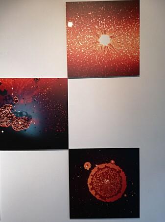 Noen av kunstverkene kan gi assosiasjoner til verdensrommet.