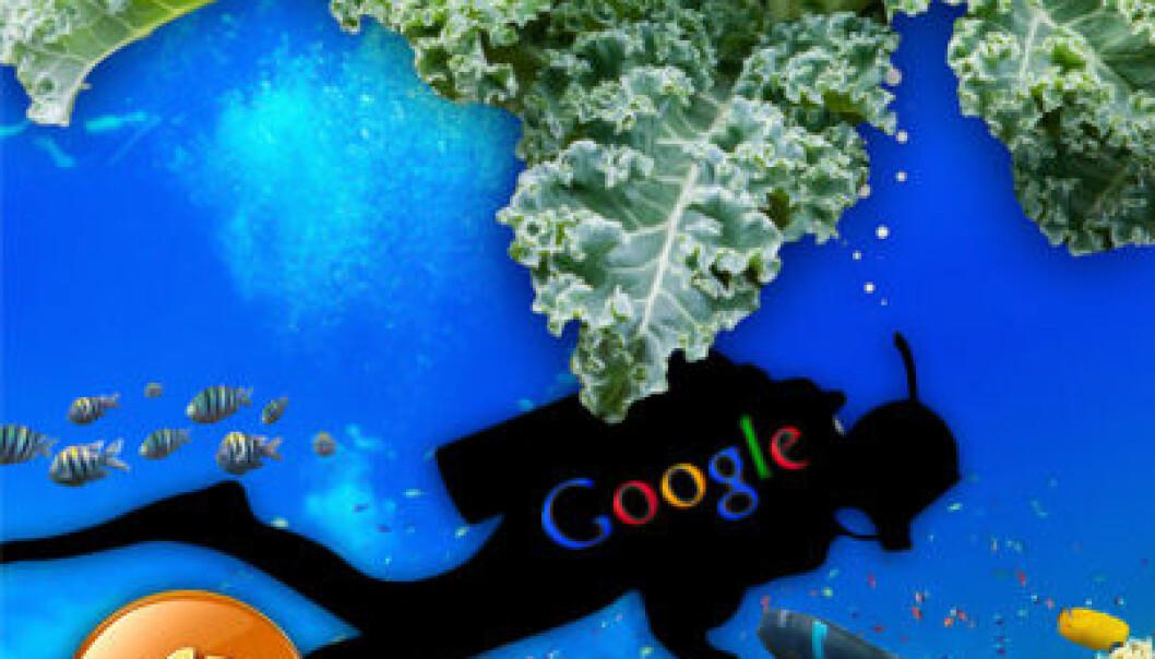 Grønnkål og Google under vann