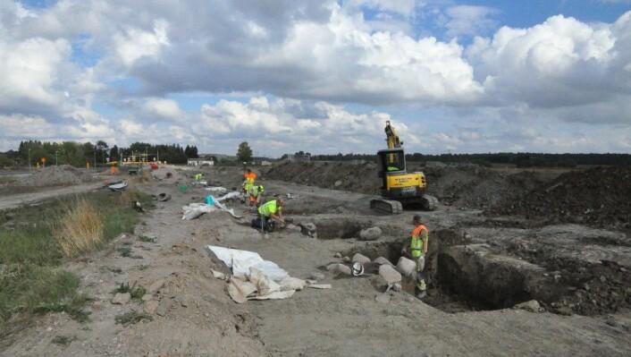 Arkeologer undersøker den nesten en kilometer lange raden hvor det en gang har stått stolper. (Foto: Riksantikvarieämbetet)