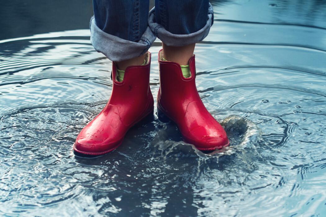 Ny dansk forskning anslår at vannstanden i verdenshavene vil stige med 70 centimeter i løpet av de neste 100 årene.