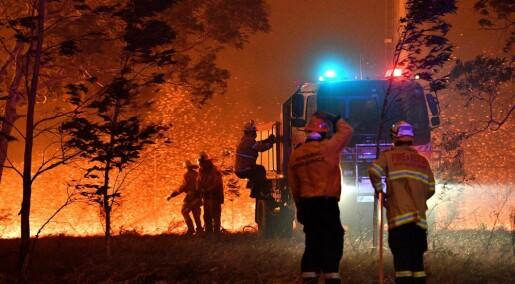 Klimaendringer gjorde skogbrannene i Australia minst 30 prosent mer sannsynlige