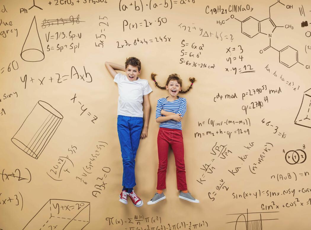 Elevane forstår fleire sider ved matematikken når dei lærer seg å tenkje algebraisk, viser ein ny studie. Å tenke og forstå er viktigare enn å herme etter læraren.