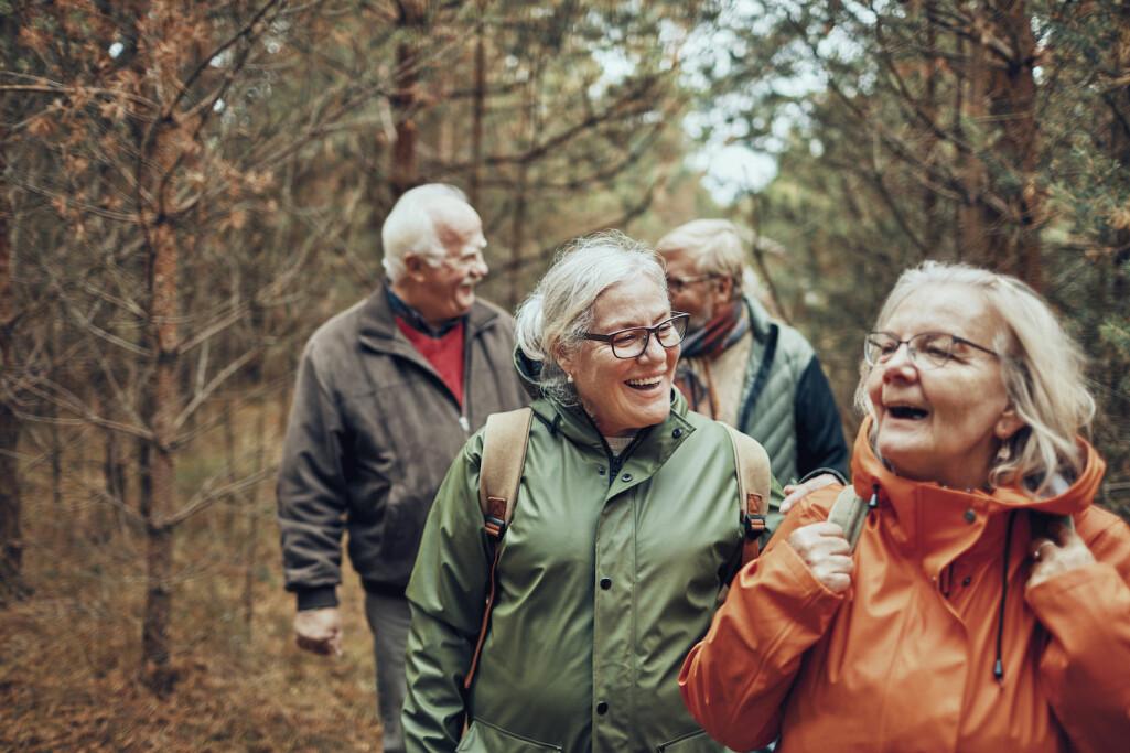 Ein tur i skog og mark i godt lag kan gjera underverk.