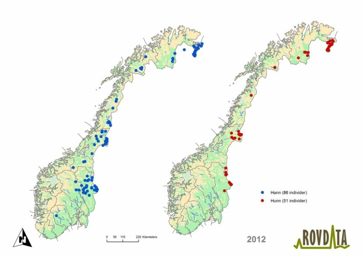 Kartet gir en oversikt over 137 brunbjørn som ble registrert i Norge i 2012, fordelt på 86 hannbjørner (blå prikker) og 51 hunnbjørner (røde prikker). Et midtpunkt er vist for individer som er påvist med mer enn en DNA-prøve.