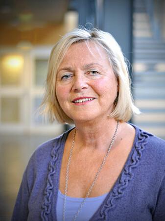 Jorunn Møller var professor ved Institutt for lærerutdanning og skoleforskningved Universitetet i Oslo fram til sommeren 2019.