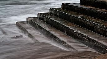 Høyere havnivå krever økt kompetanse