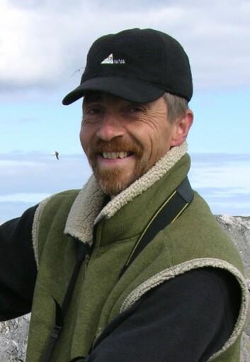 Lundefuglen overvåkes nøye av forskerne. Tycho Anker-Nilssen ved NINA mener det er grunn til bekymring for de siste årenes triste forhold i noen av koloniene. (Foto: Thomas Aarvak)