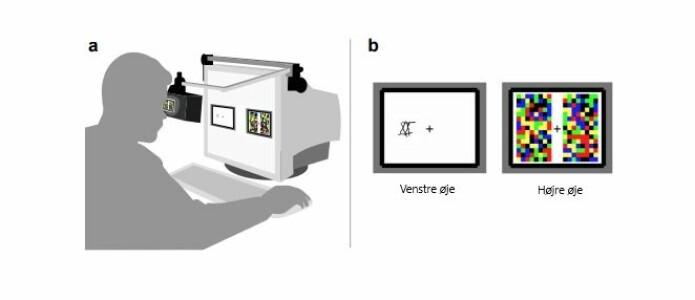 I et av eksperimentene viste forskerne et forstyrrende, fargerikt flimmer for testpersonenes høyre øye, mens de ulike steinaldermønstrene glimtet i stedet for det venstre øyet. Testpersonene skulle markere når de så mønstret. De nyere mønstrene var mer effektive til å fange testpersonenes oppmerksomhet.