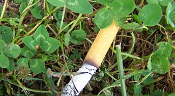 Sigarettsneiper er det største plastproblemet i dansk natur