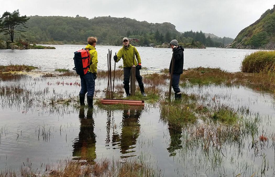 Her tar forskerne prøver fra tidevannsavsetninger ved Lista, et av få steder langs norskekysten der målinger viser en pågående marin transgresjon, altså at havet stiger raskere enn landet.