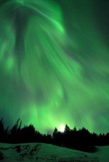 """Nordlys over Alaska 23.-24. mars 2007.(Foto: Daryl Pederson/NASA)."""