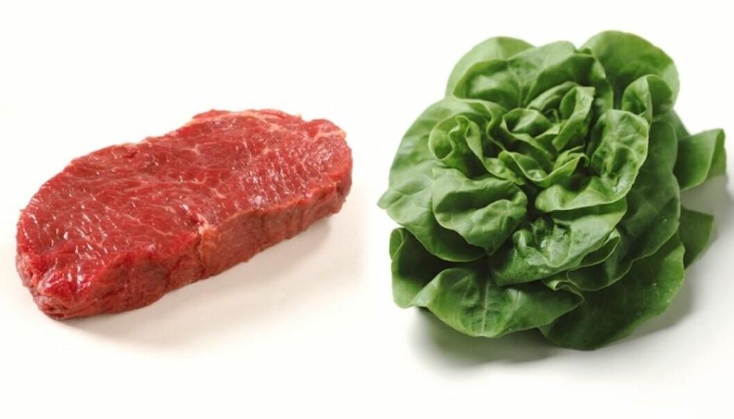 Transport av mat har relativt liten betydning for klimaet. Andre sider ved matproduksjonen skaper langt større klimautslipp.
