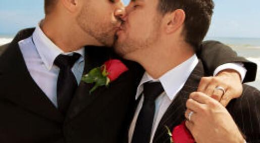 Homofili tolereres − men lykken er hetero