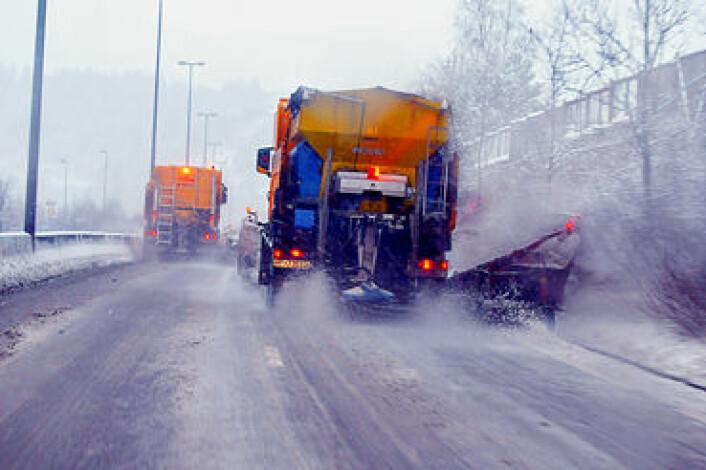 Salting av norske vinterveier er doblet på ti år og det er ingen tvil om at veisaltet påvirker naturen. (Foto: Knut Opeide/Statens vegvesen)